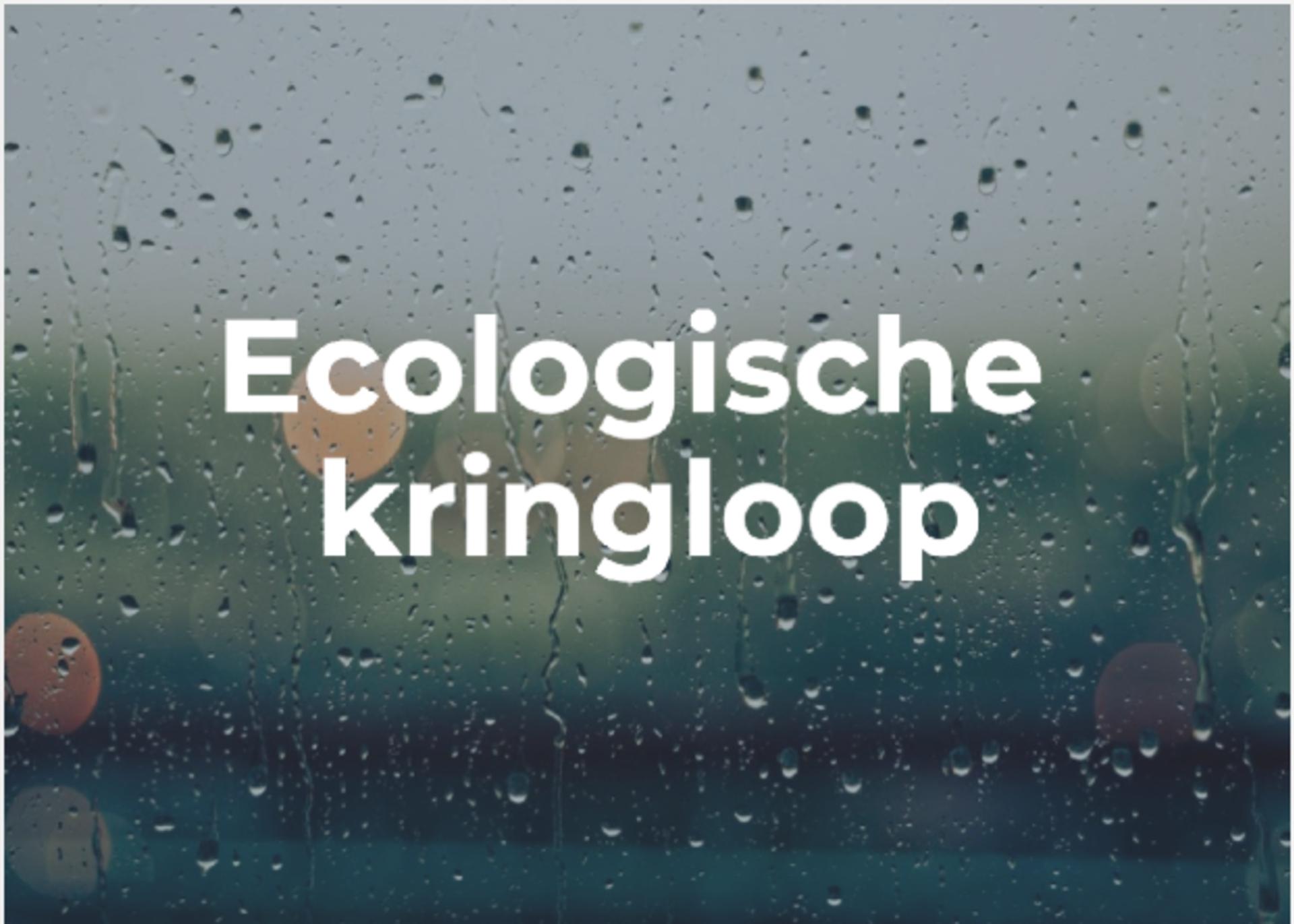 Aardrijkskundeles over de ecologische kringloop